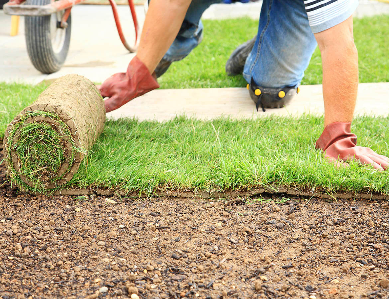 hortek urejanje okolja svetovanje namakalni sistemi - storitev polaganje travnih tepihov
