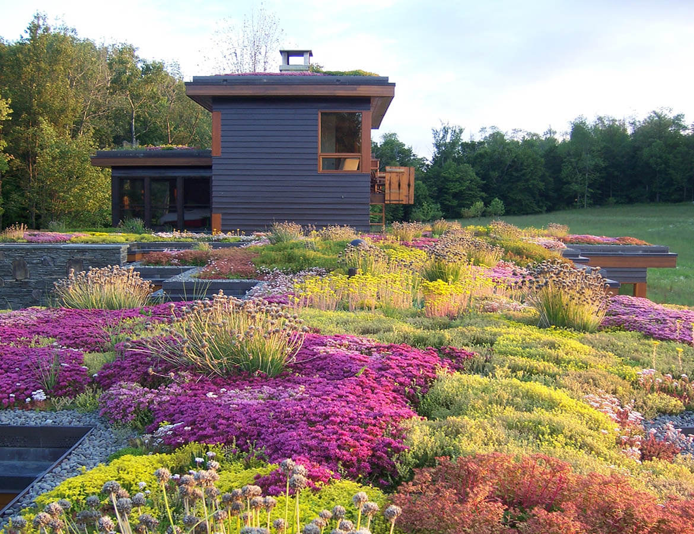 hortek urejanje okolja svetovanje namakalni sistemi - storitev zelene strehe