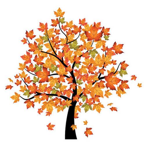 hortek urejanje okolice namakalni sistemi svetovanje drevo jesen