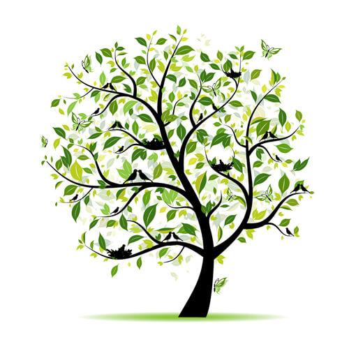 hortek urejanje okolice namakalni sistemi svetovanje drevo poletje
