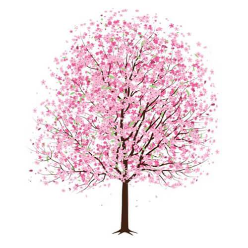 hortek urejanje okolice namakalni sistemi svetovanje drevo pomlad
